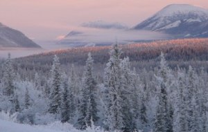 About the Alaska Chapter of the American College of Emergency Physicians