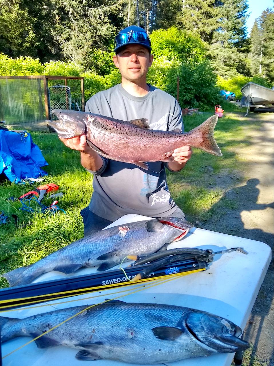 King Salmon by spear gun