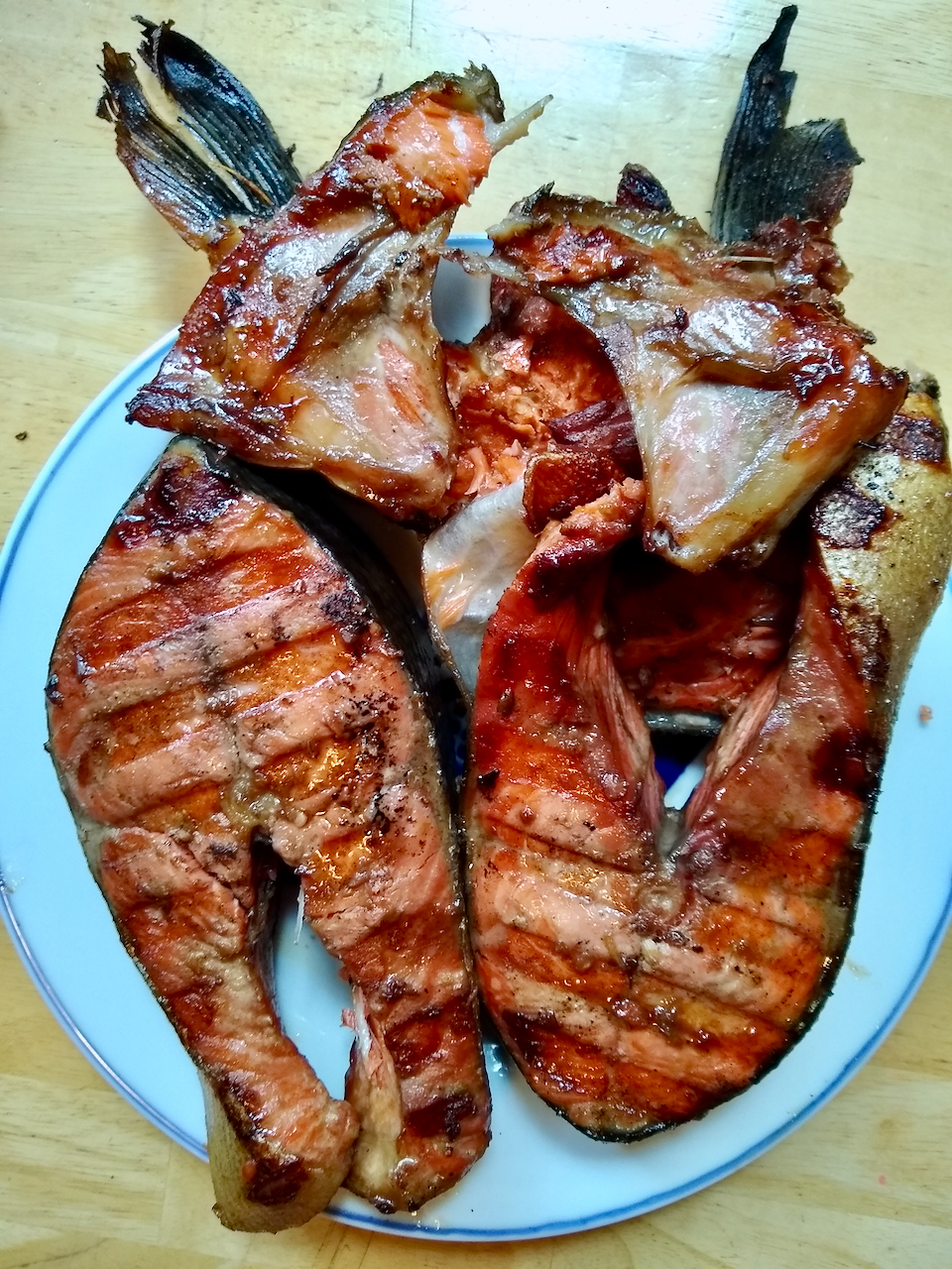 Salmon steaks by spear gun
