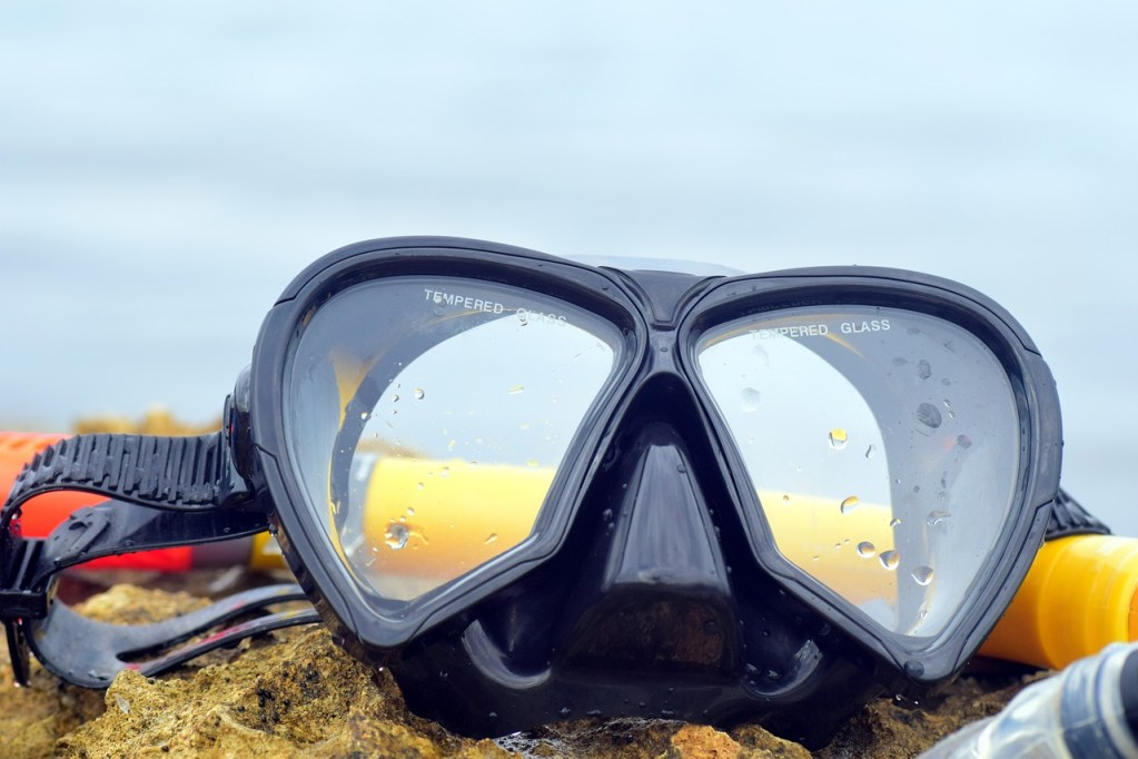 diving mask, diving, nature
