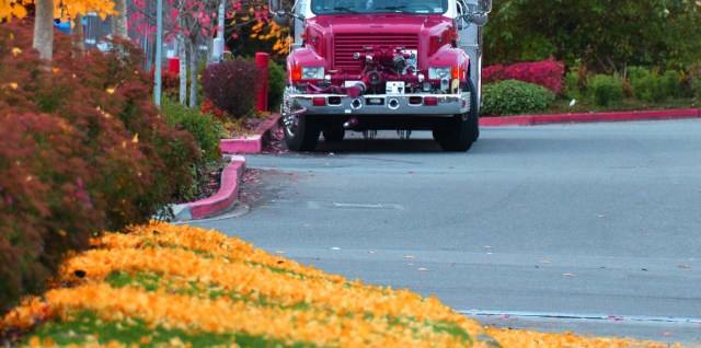 Fall and a Fire Truck