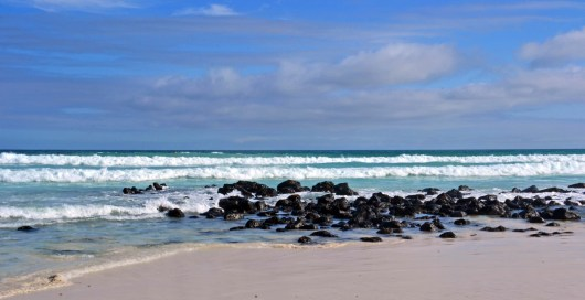 Santa Cruz Beach - Galapagos, Ecuador