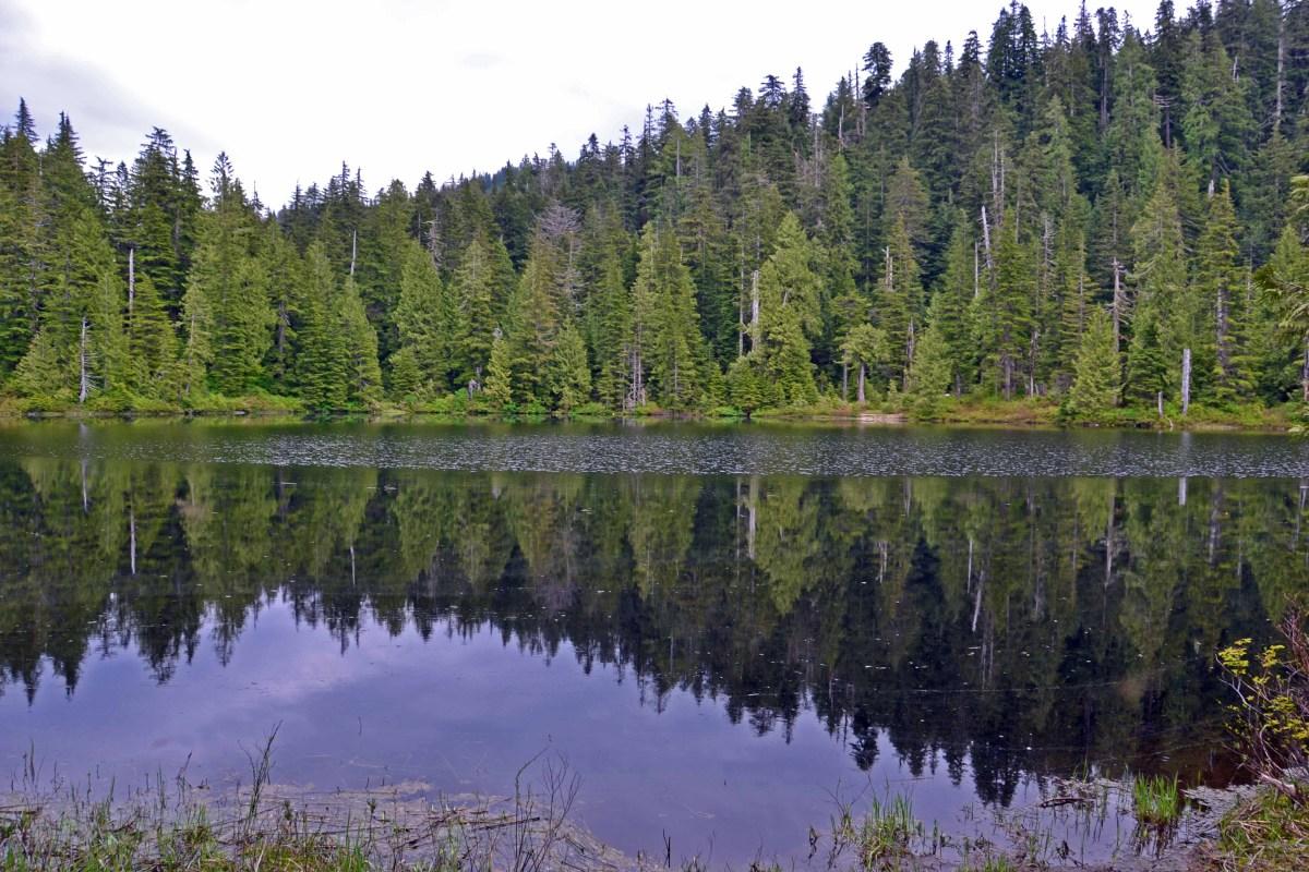 Ashland Lakes