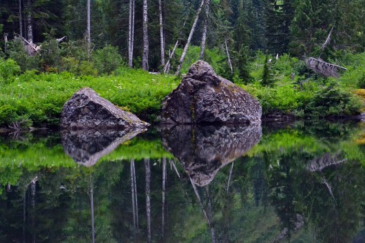 Reflection in Heather Lake