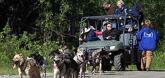 alaska sled dog tour