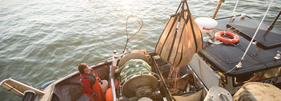 Copper River kings still open for commercials, closed for sportmen