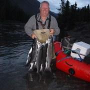 Strong Russian sockeye run provides great fishing