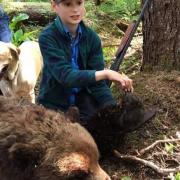 Brave 11-year-old stops charging bear; week of crazy bear incidents continues