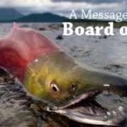 UPDATE: Board of Fish in Anchorage this week