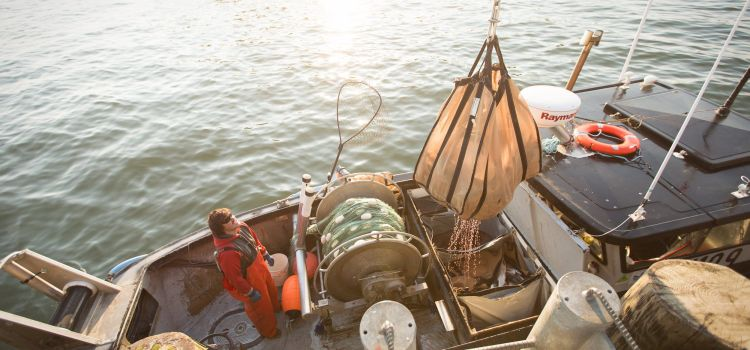 Are you celebrating commercial fishing day today?