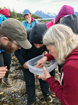 group of people examining scientific sample