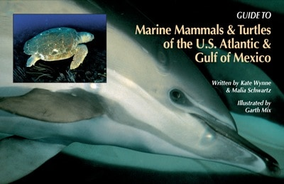 Guide To Marine Mammals And Turtles Of The US Atlantic Gulf Mexico