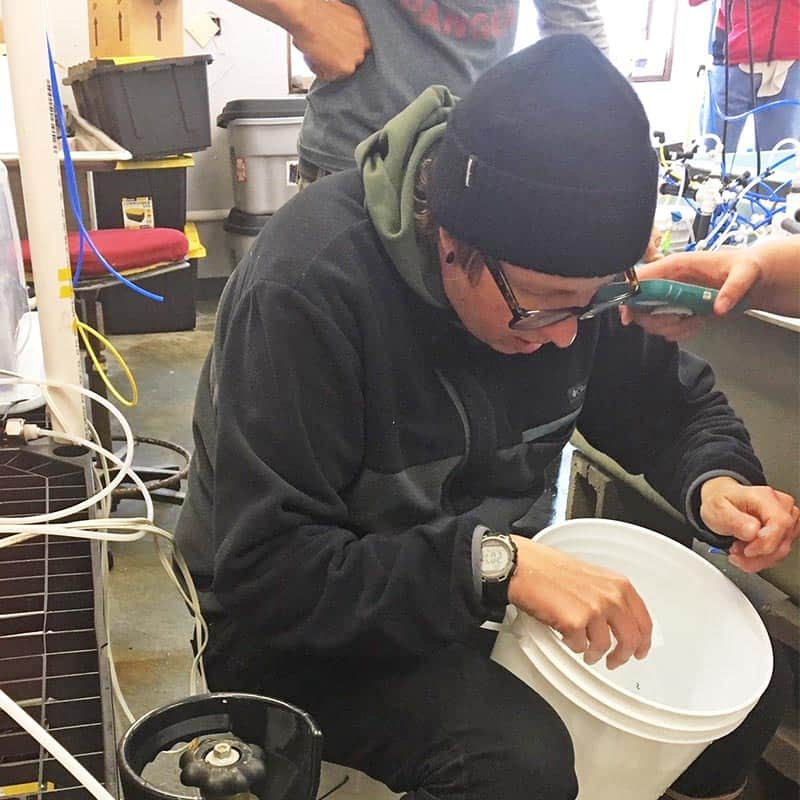Woman in black cap in web lab working with white bucket