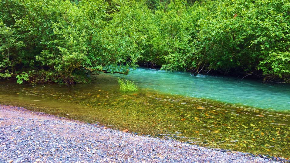 creek waters of different colors merging