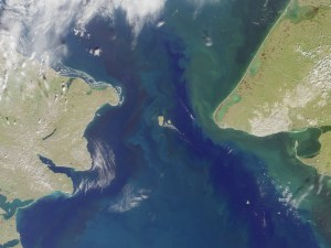 satellite image of blue ocean with large patches of green.