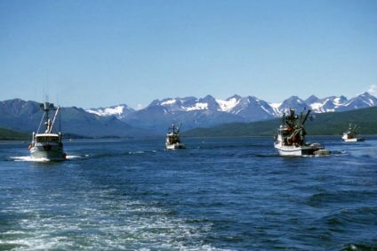 fishing boats on the water with mountains in the distance