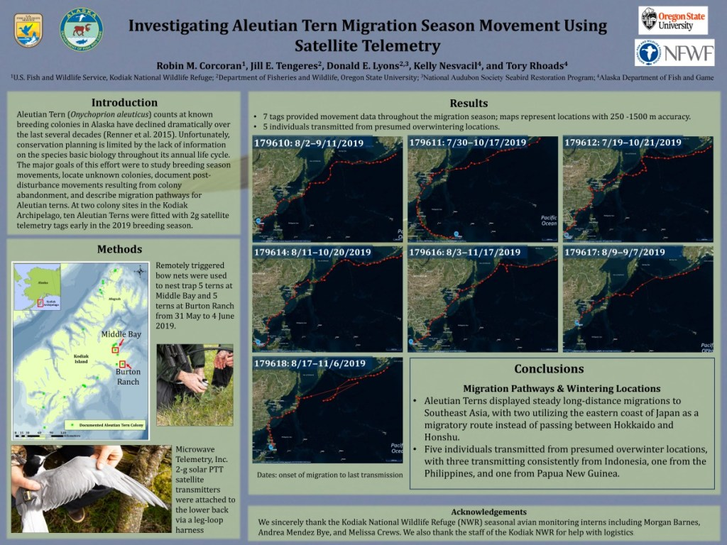 Poster Investigating Aleutian Tern Migration Season Movement Using Satellite Telemetry