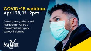 Man with medical mask, Alaska Sea Grant logo and text COVID-19 webinar