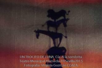 UN-TROCITO-DE-LUNA--A-la-Sombrita--FITSevilla2015--CDAEA-14