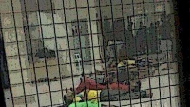 صورة الأوضاع الصعبة للسجناء البحرينيين في أزمة كورونا