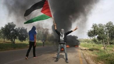 صورة من يريد التحرير فل يعد العدة