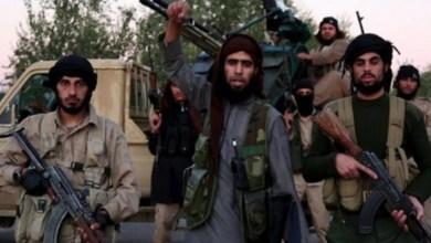 صورة دعوة لعقد لقاءات إعلامية مع الدواعش والارهابيين لفضحهم والدول الراعية لهم  !