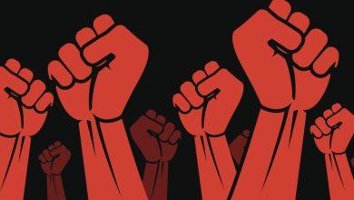 صورة الثورات والأنظمة.. والبيان المسروق..
