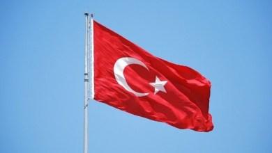 صورة الدور التركي في المنطقة والخيارات المتاحة