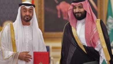 صورة طحنون: استياء وعتب سعوديّان على الإمارات