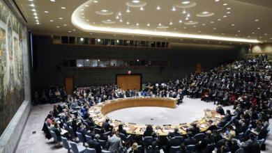 صورة دعوة الحوثي ومجلس الأمن الدولي