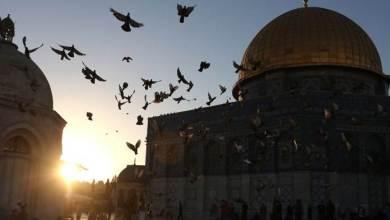 صورة يوم سقوط بغداد…ضاعت فلسطين