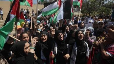 صورة قاومت غزة فإنتصرت فلسطين