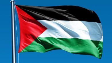 صورة المصالح المصرية الإسرائيلية والسيطرة على موارد الفلسطينيين