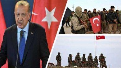 صورة قريب أردوغان يعترف بإرسالهم السلاح إلى سوريا