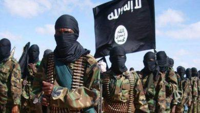 صورة داعش والقاعدة الجيشُ الإحتياطيُ الأمريكي..