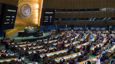 صورة مشروعية فصائل المقاومة دوليًا في ظل قرارات الجمعية العامة للأمم المتحدة: قرار رقم 3034 وقرار رقم 3246