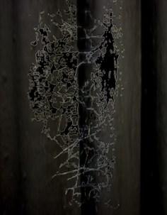 Digital Prints-12