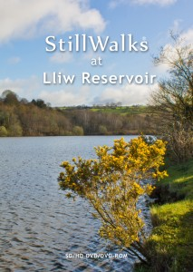 StillWalks