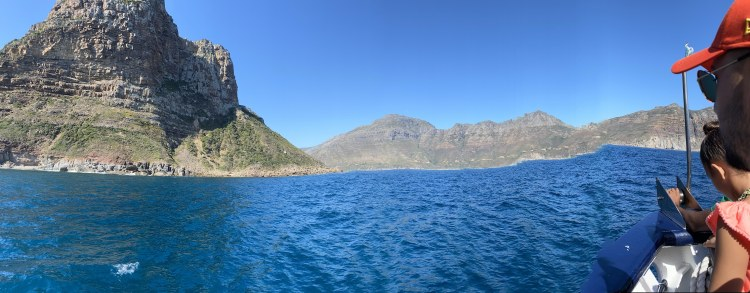 Seal Island/Hout Bay