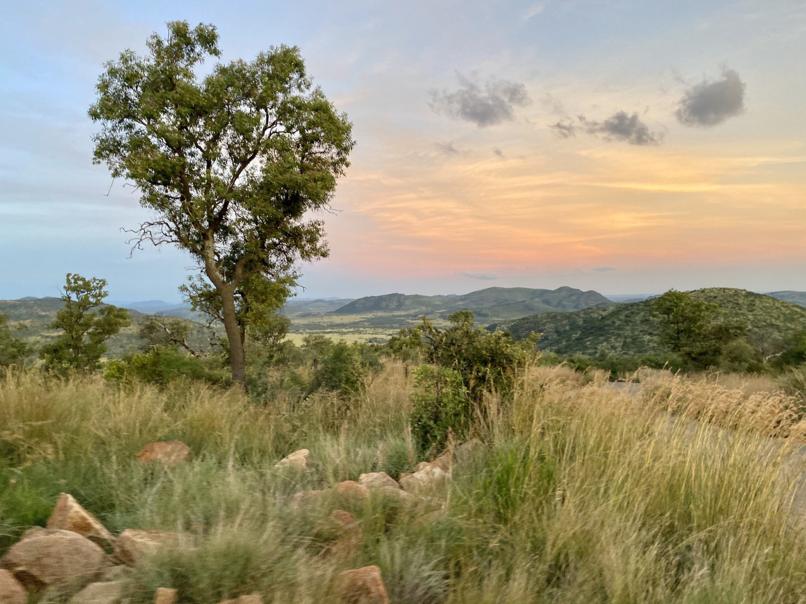 Skyline at Pilanesberg National Park