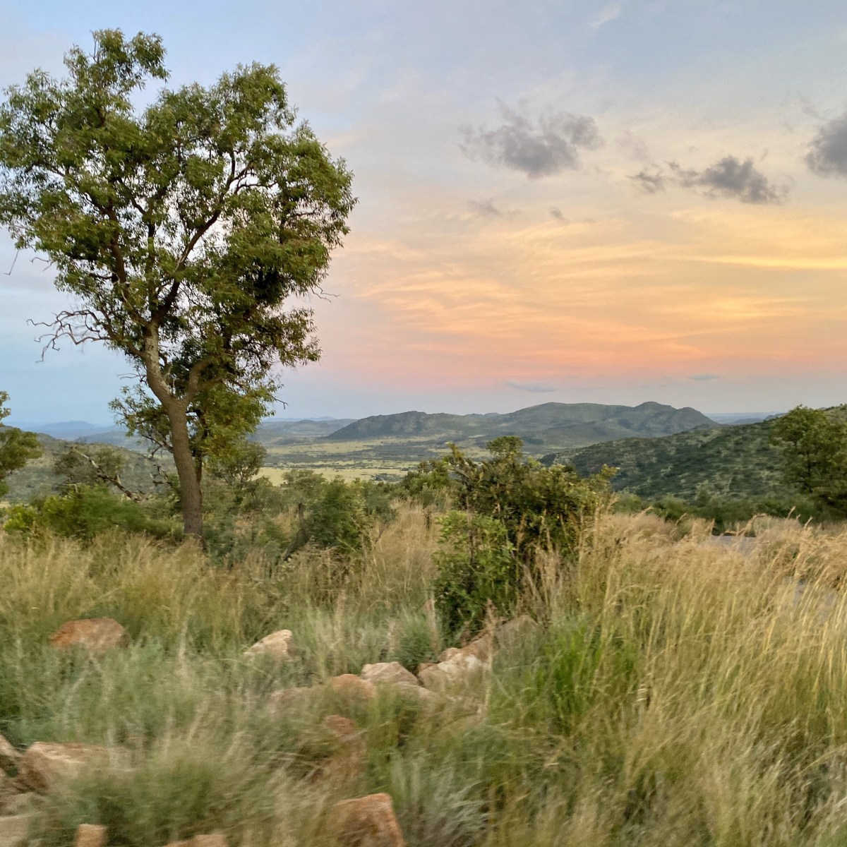 Skyline at Pilanesberg National Park