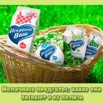 Молочные продукты: какие они бывают и их польза
