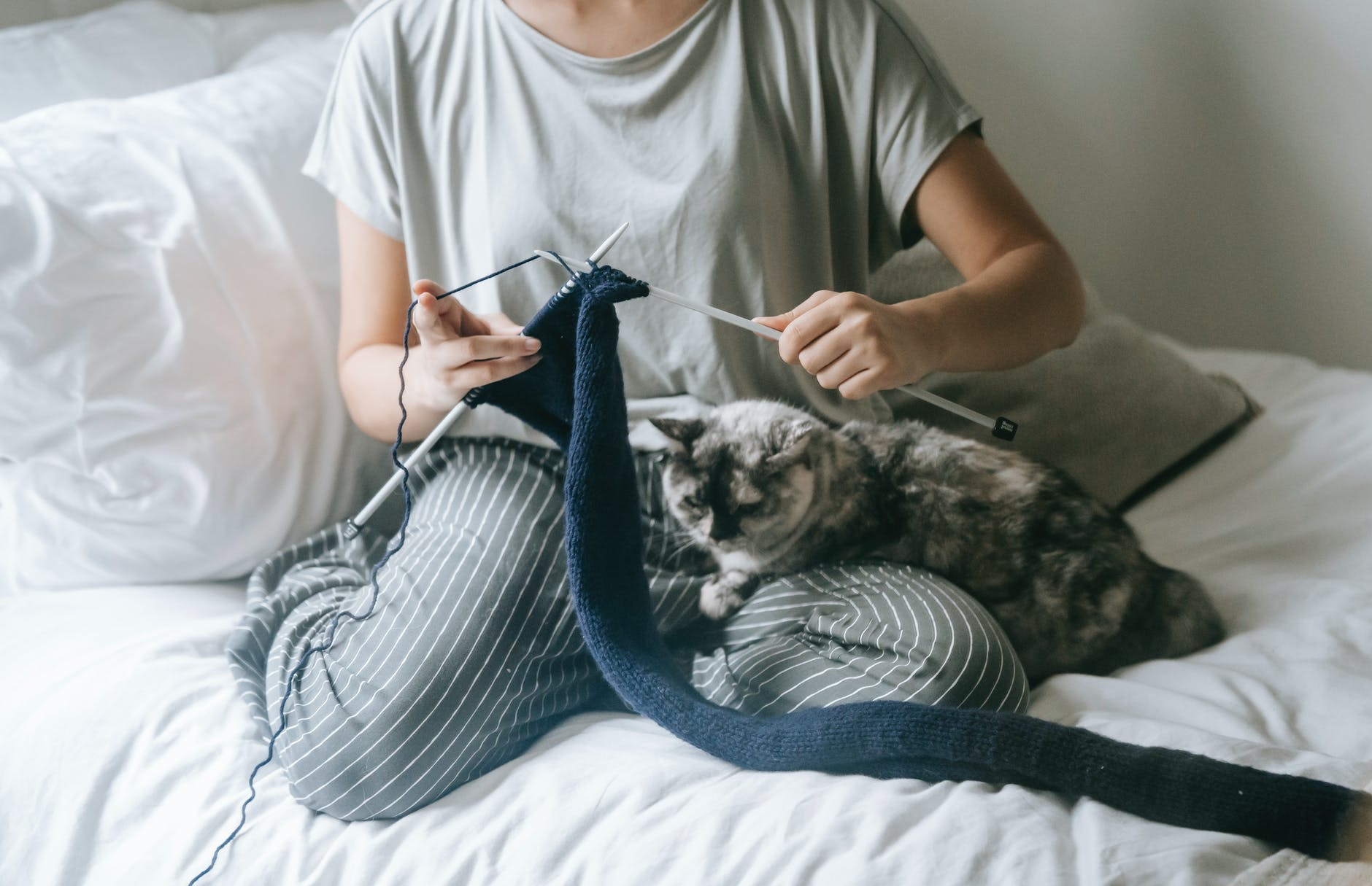 unrecognizable female knitting while recreating on bed with adorable cat