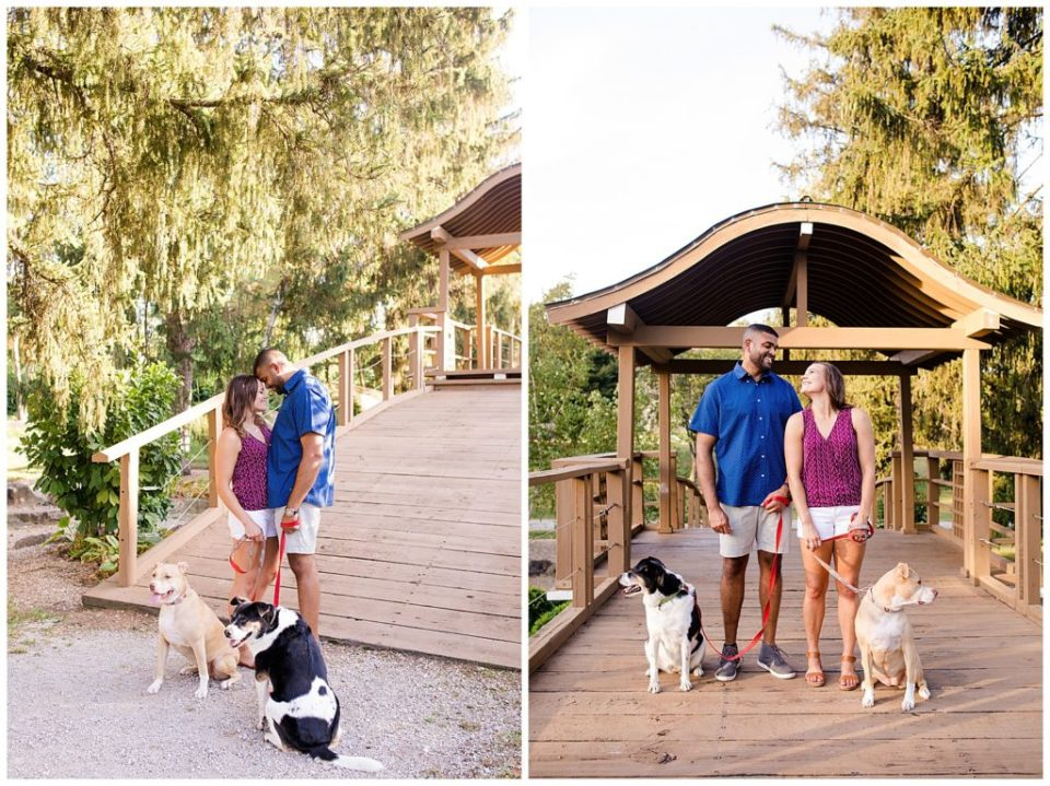 A photograph of an engaged couple standing close, touching foreheads, as they pause in a park with their two dogs, and a view of them standing and smiling with their pets at the Columbus Franklin Park Conservatory by Alayna Parker  - Columbus OH engagement photographer