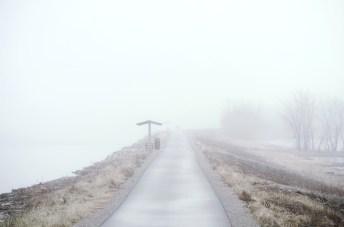 misty6