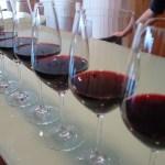 Representantes de la zona de la DO de Almansa piden la creación de una Ruta del Vino
