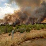 Pagará la extinción del fuego quien lo provoque, así endurece Castilla-La Mancha su normativa forestal