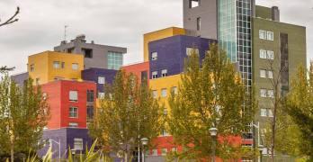 El Consejo de Gobierno aprueba la licitación de los colegios de Imaginalia y Universidad