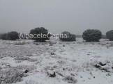 nieve (2)
