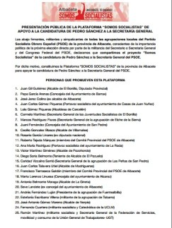 promotores plataforma apoyo sanchez 1